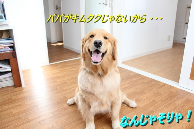 IMG_69310424.jpg