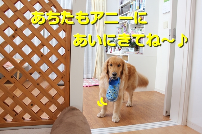 IMG_69630422.jpg
