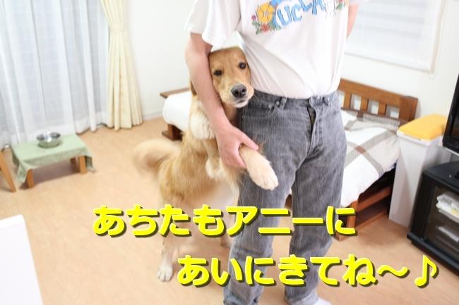 IMG_71350430.jpg