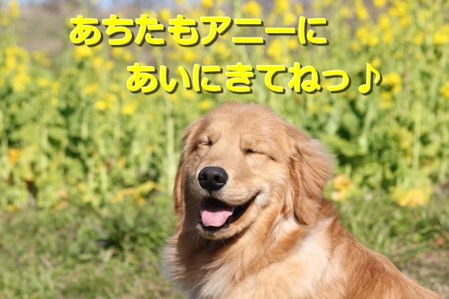 IMG_72000420.jpg