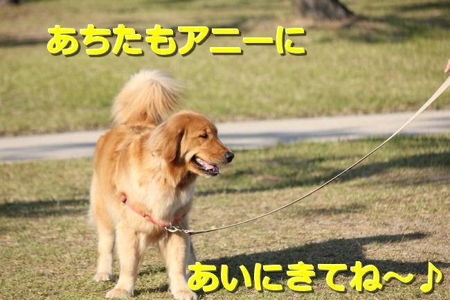 IMG_76570508.jpg