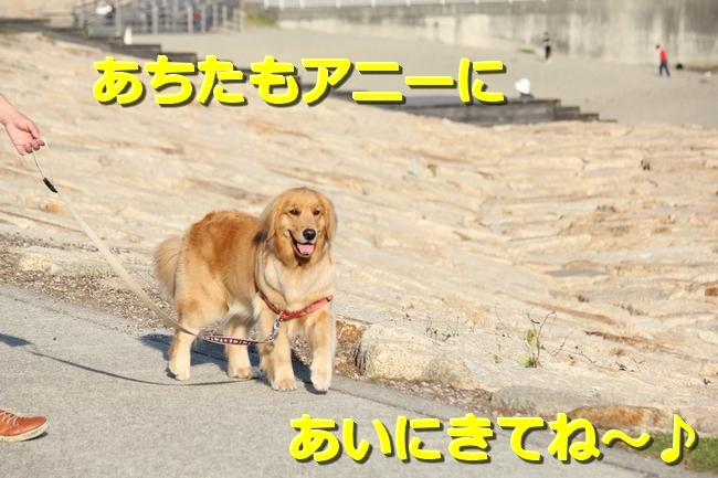 IMG_76840511.jpg