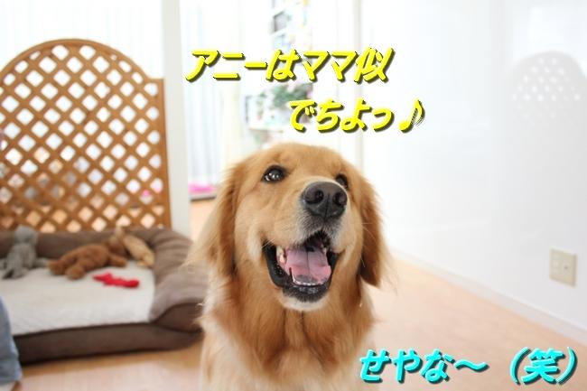 IMG_76920511.jpg