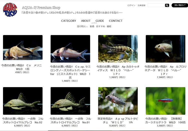 SharedScreenshot_20210412010844b94.jpg
