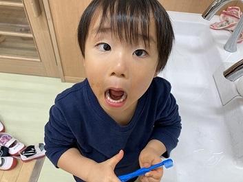 ぺんぎん組 歯磨き (2)