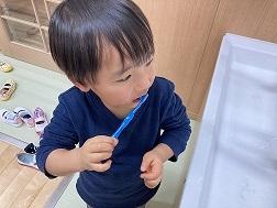 ぺんぎん組 歯磨き (3)
