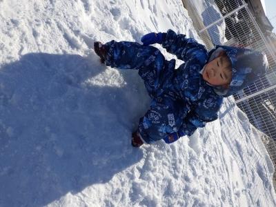 雪遊び うさぎ4