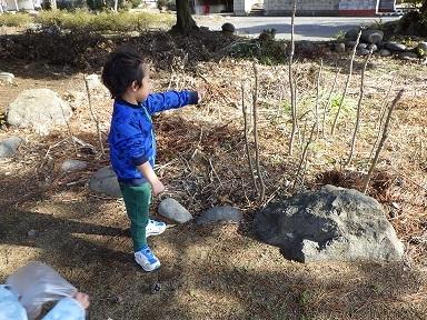 ぺんぎん組 しいのみ公園 (3)