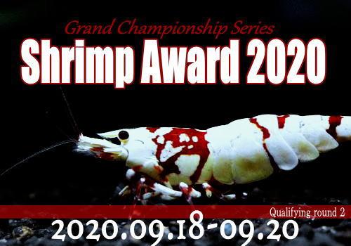 shrimpaward20200901.jpg