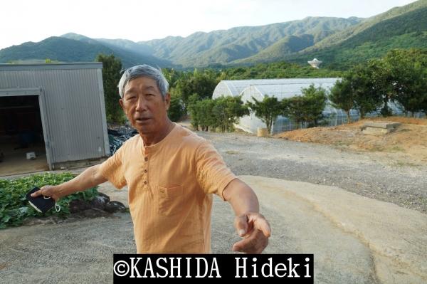 石垣島 島田長政さん1