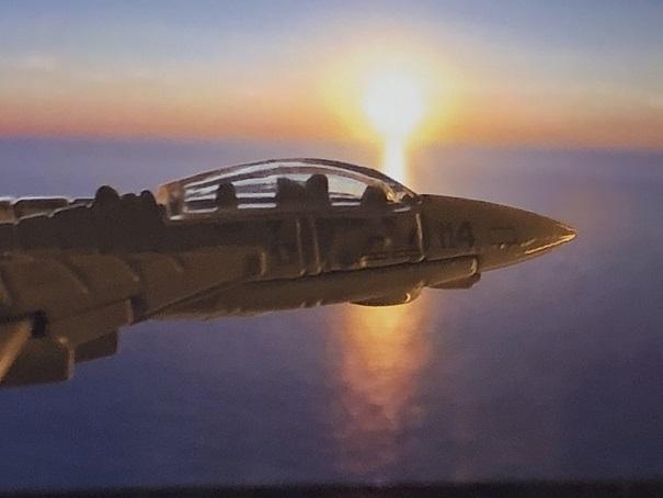 TOP GUN GRUMMAN F-14 TOMCAT (2)