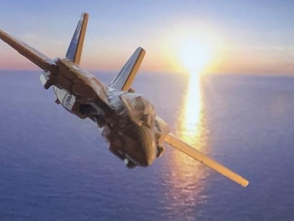 TOP GUN GRUMMAN F-14 TOMCAT (3)