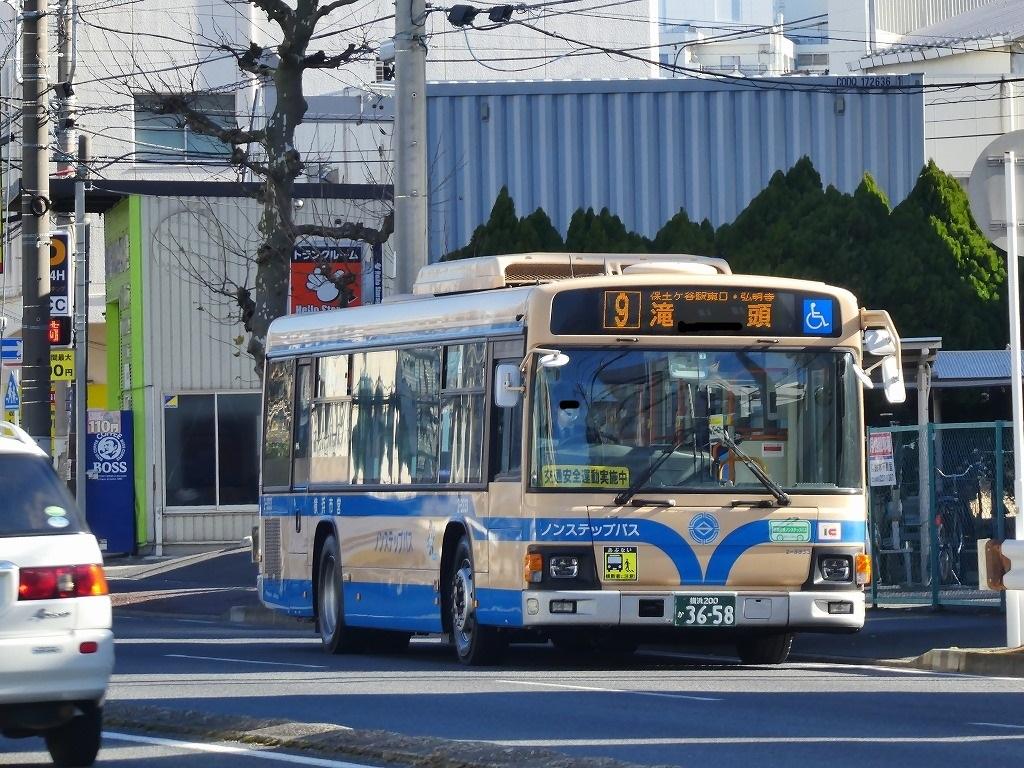 P1030195-4.jpg