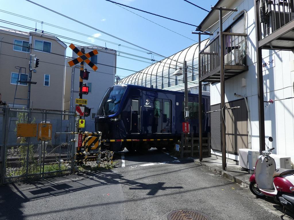 P1110560.jpg