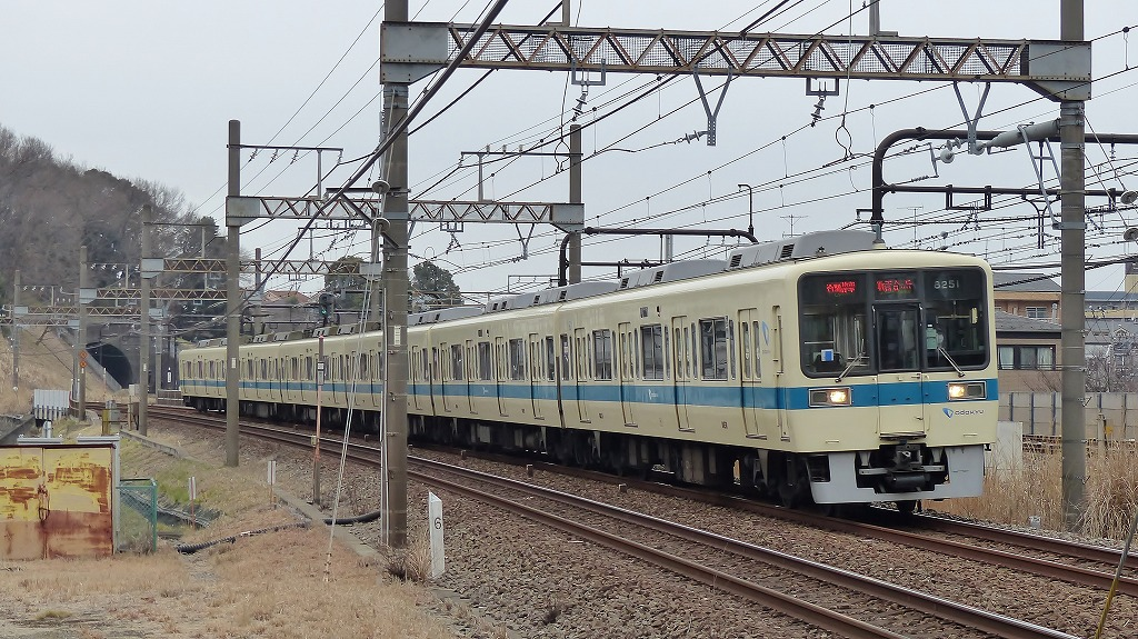 P1460456-3.jpg