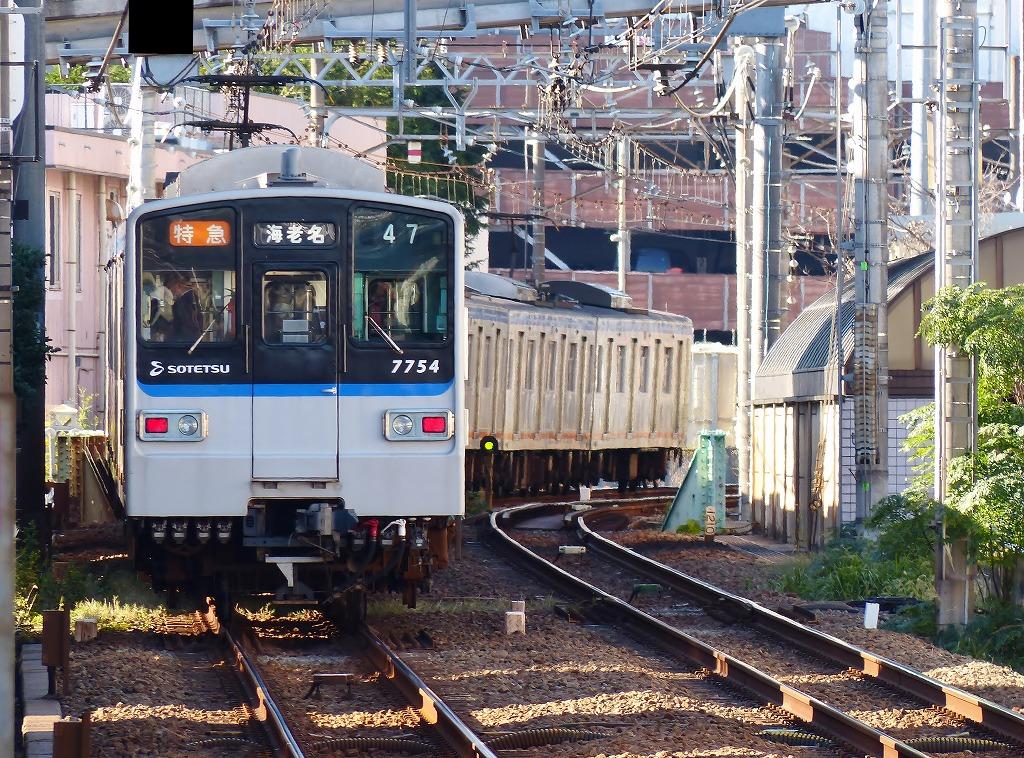 P1500361.jpg