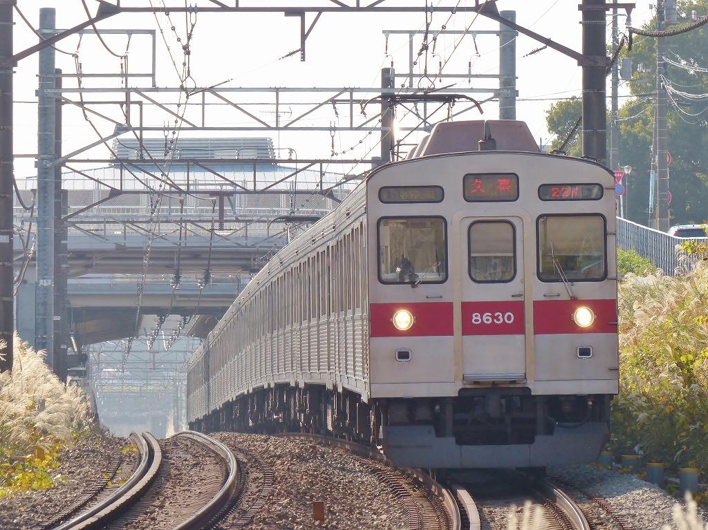P1500641-2.jpg