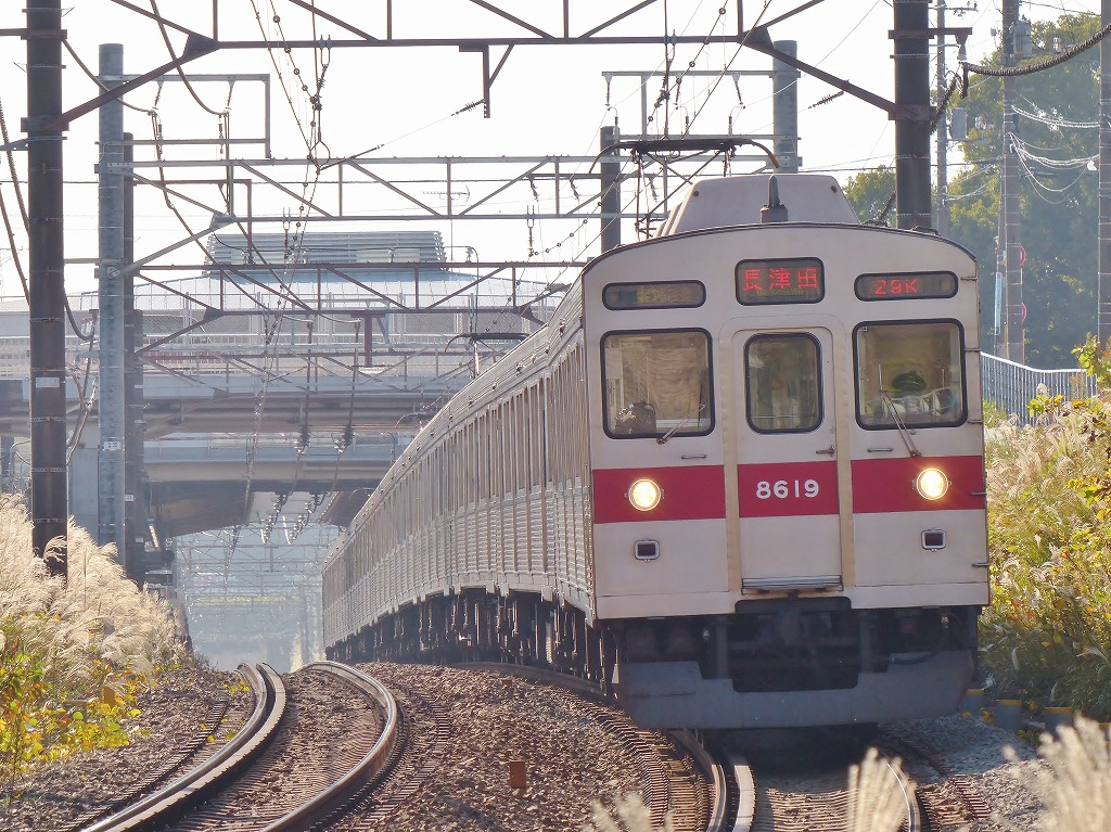 P1500687-2.jpg