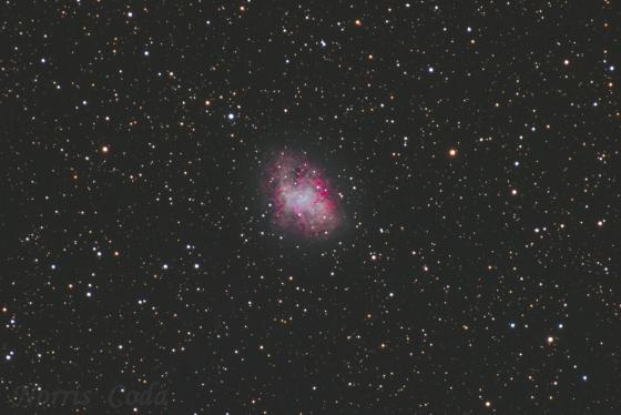 超新星残骸 M1 かに星雲