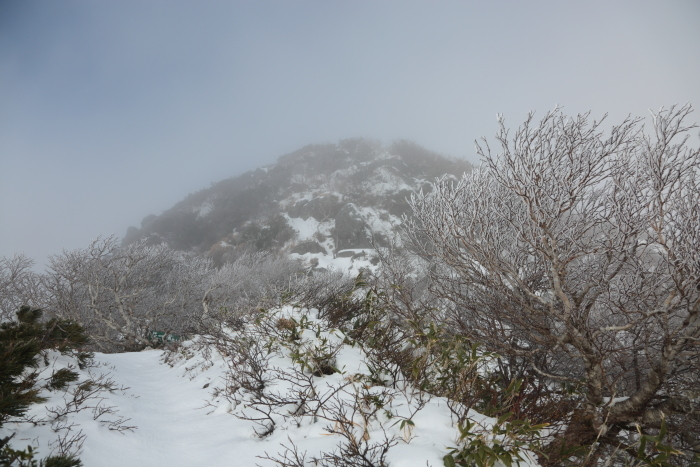 ホロホロ山 20201115 (8)