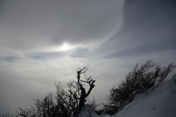ホロホロ山 20201115 (9)