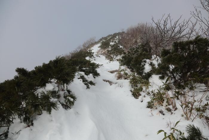 ホロホロ山 20201115 (7)