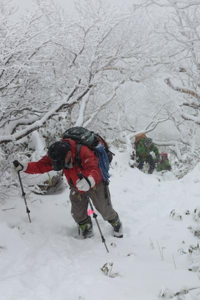 ホロホロ山 20201123 (8)