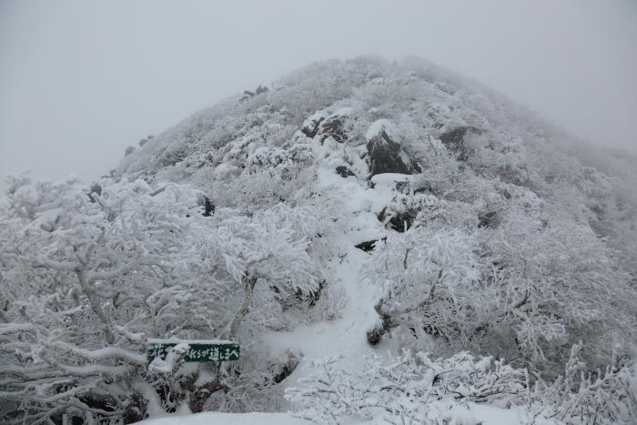 ホロホロ山 20201123 (11)