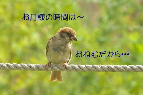 020_2020100122303724d.jpg