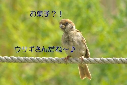 040_20201001223040cb6.jpg