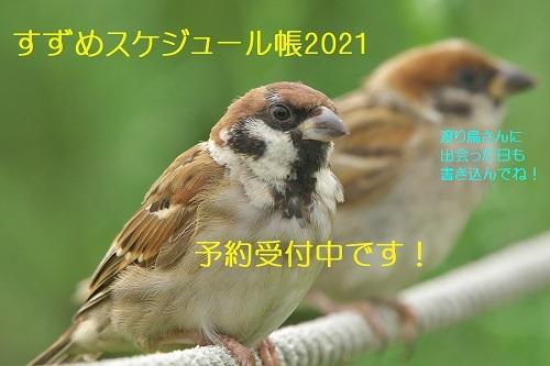 100_202009262355571e9.jpg