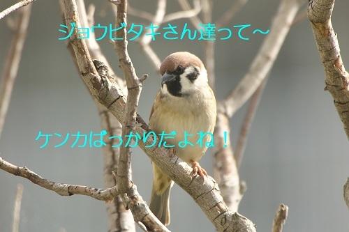 100_2020101922253648c.jpg