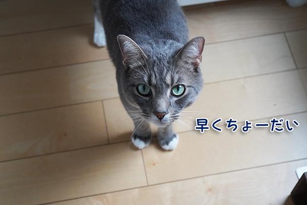 200615_2.jpg