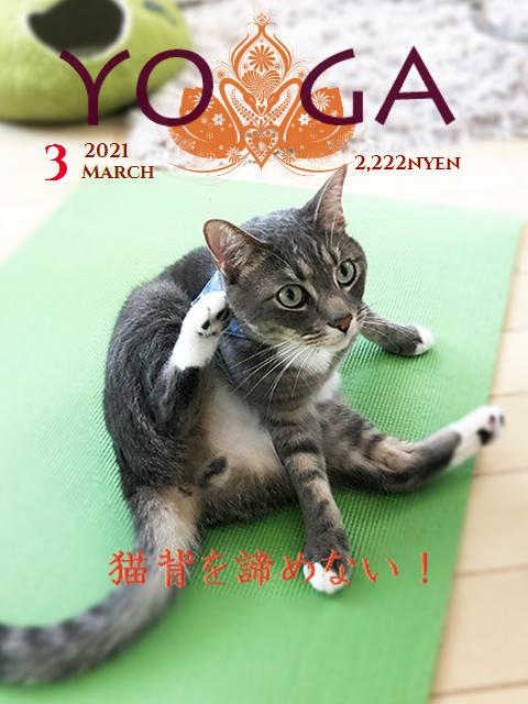 yogateto1.jpg
