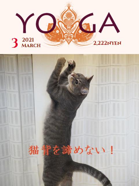 yogateto2.jpg