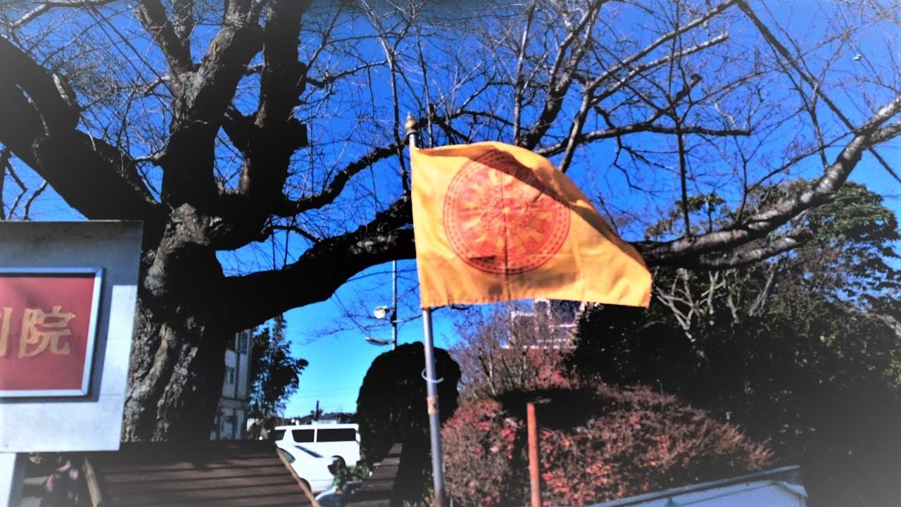 ワットパクナム(千葉県成田市)タイのお寺のタイの黄色い旗(タイ王室)