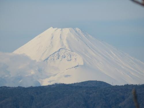 ようやく真っ白雪化粧♪富士山~2021.01.25