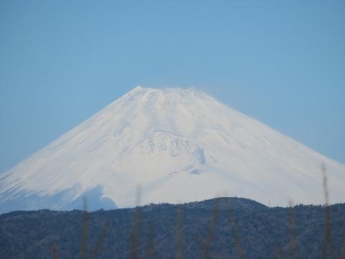 今日の富士山、暴風で山頂の雪が舞っているらしい、雲が取れ雪景色~2021.01.29