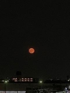 昨日の満月IMG_1758
