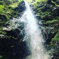 龍神滝D0D0DEA7-