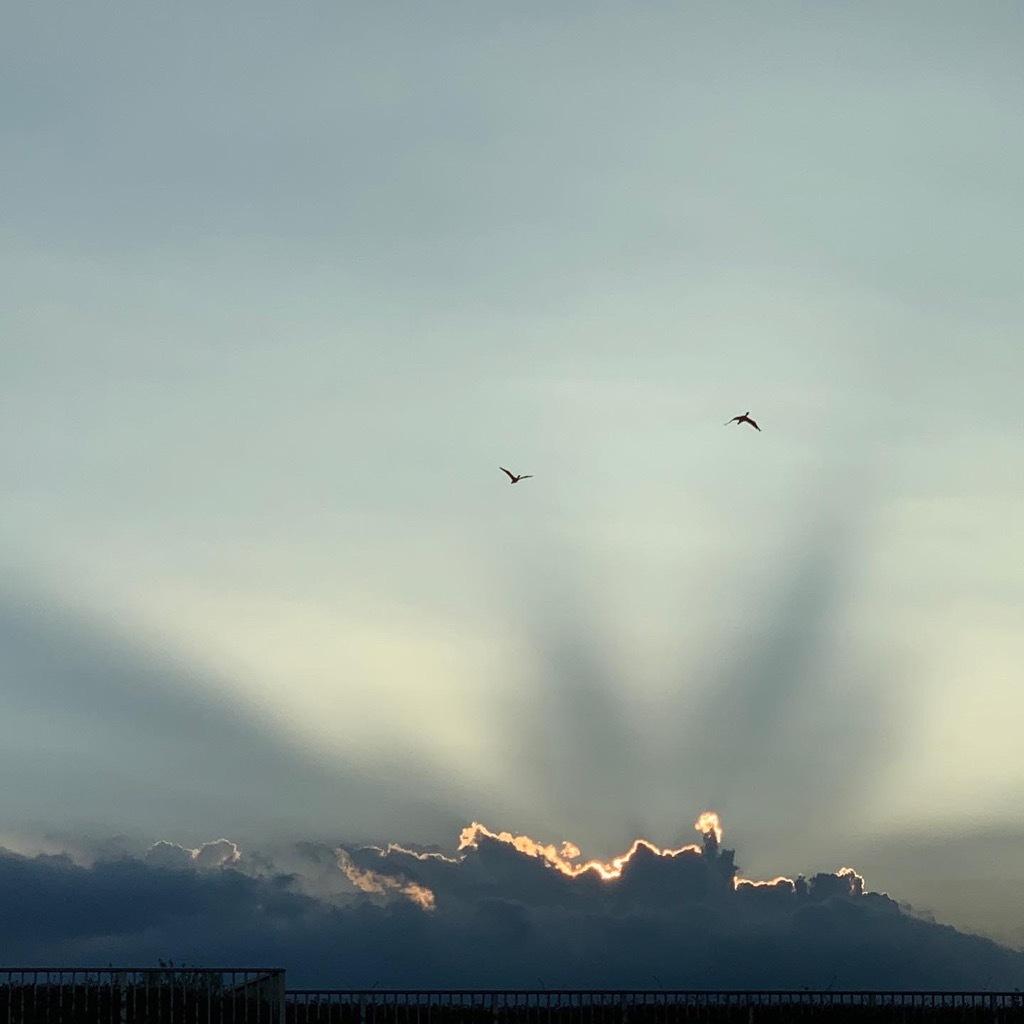 光と雲と鳥BB9E61E3-