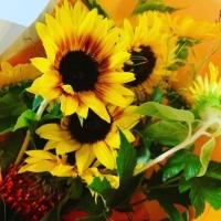 向日葵の花束3E64FD69-