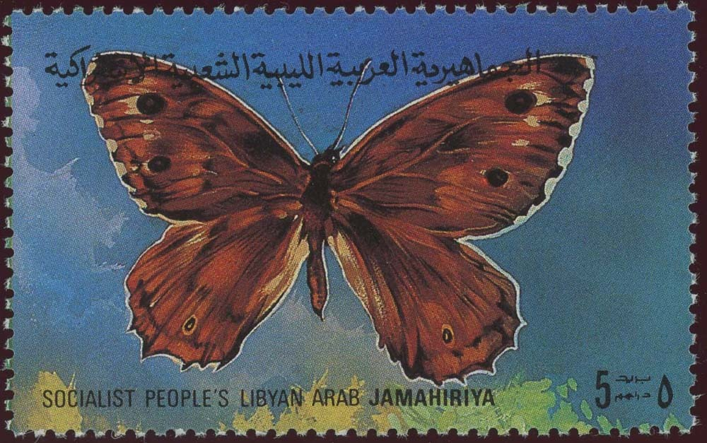 Libya:1981-1