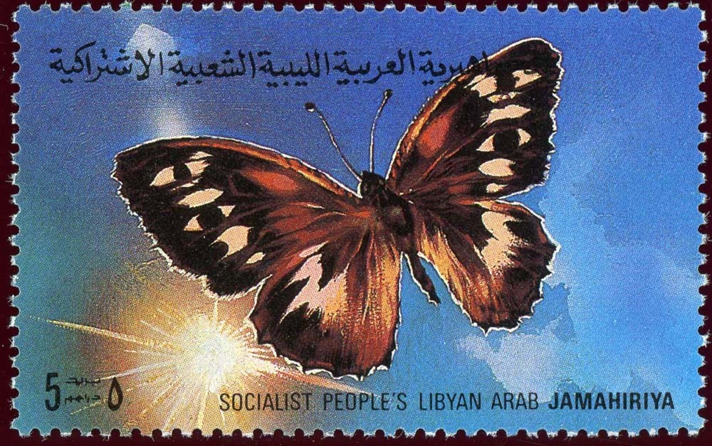Libya:1981-2