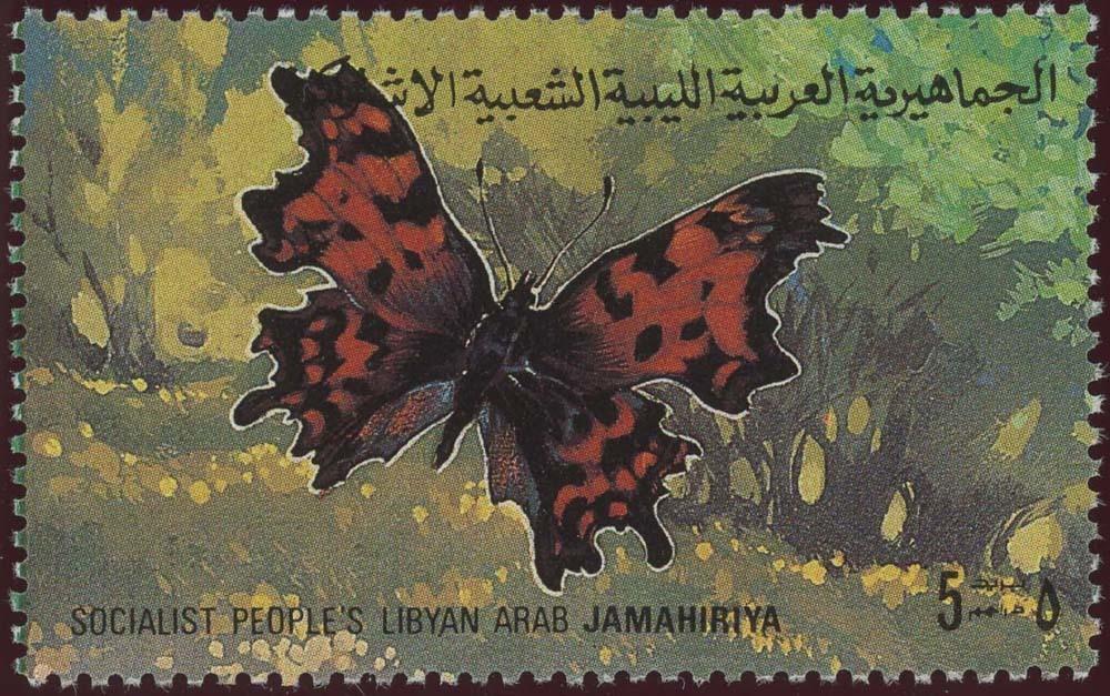 Libya:1981-3