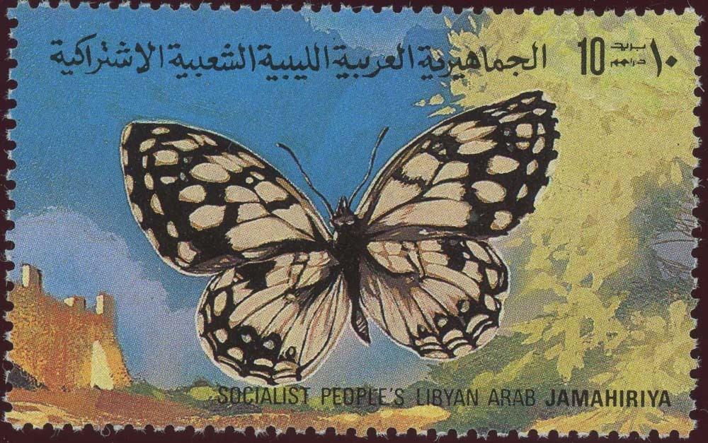 Libya:1981-7