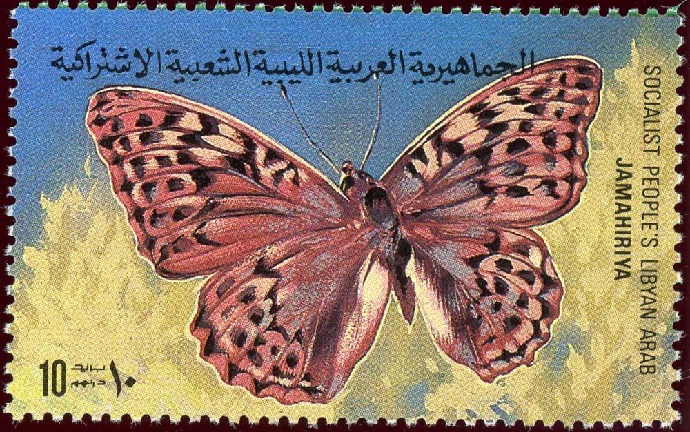Libya:1981-6