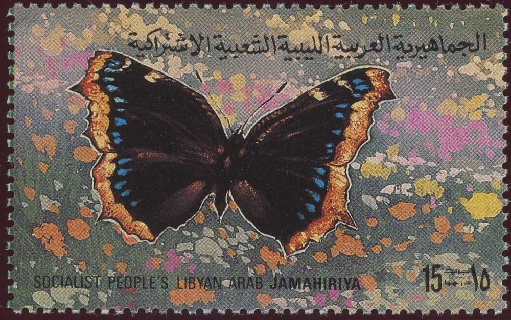 Libya:1981-9