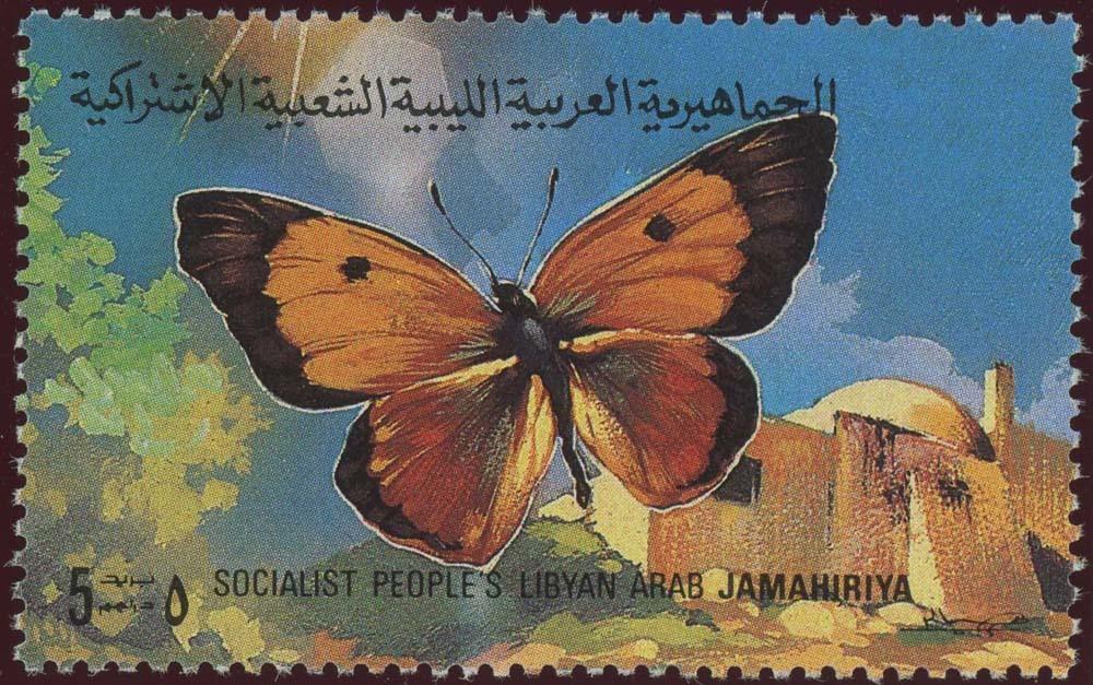 Libya:1981-4