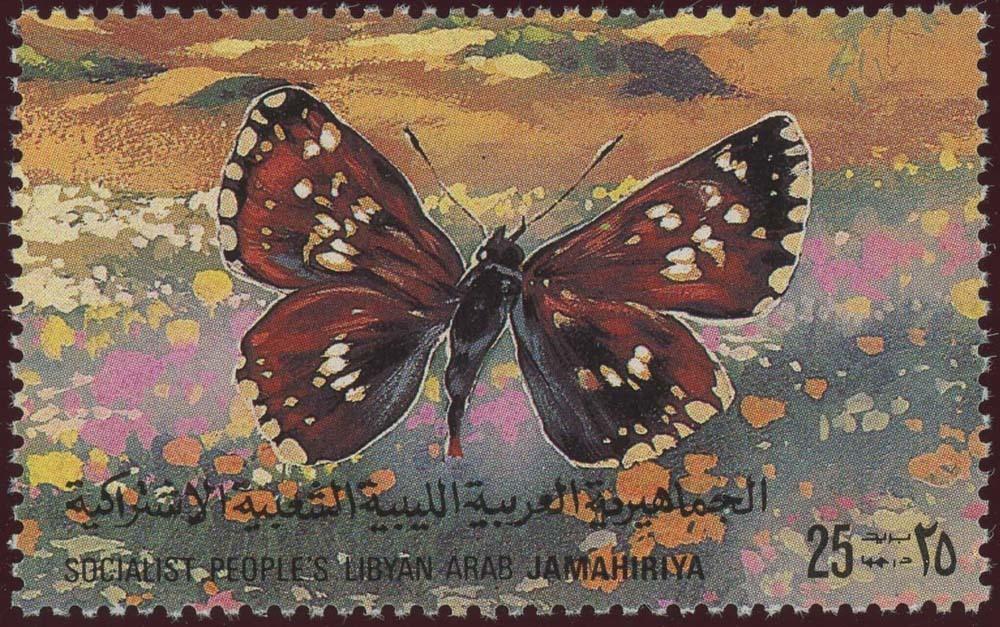 Libya:1981-13